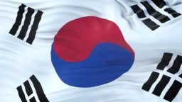 South Korea flag waving in the wind with highly detailed fabric texture. Seamless loop