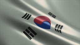 South Korean Flag High Detail - Looping stock video