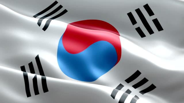 韓国の旗 - 朝鮮半島点の映像素材/bロール