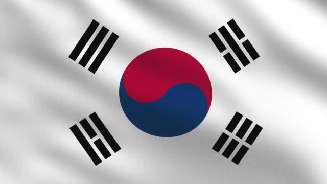 vídeos de stock, filmes e b-roll de bandeira sul-coreano - coreia do sul