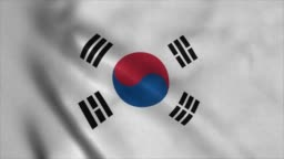 South Korean flag waving in the wind. National flag of South Korea