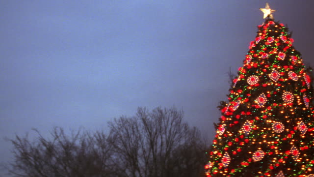 MS PAN South lawn of white house and national Christmas tree / Washington D.C., United States