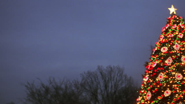 ms pan south lawn of white house and national christmas tree / washington d.c., united states - luce natalizia video stock e b–roll