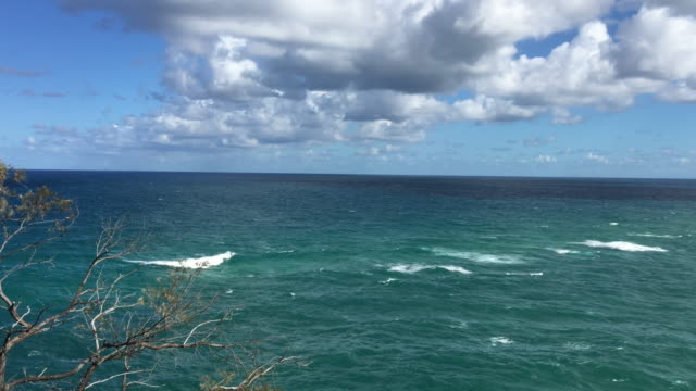 south pacific ocean, panorama at point lookout - south pacific ocean video stock e b–roll