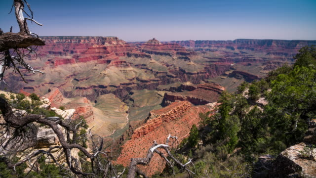 steadycam: south rim grand canyon - grand canyon stock-videos und b-roll-filmmaterial