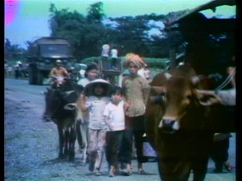 south vietnamese villagers walk along highway 15. - animal stock videos & royalty-free footage
