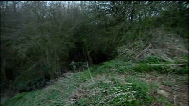 two children charged with attempted murder 642009 police cordon at edge of fields where attacks were alleged to have taken place - 殺人点の映像素材/bロール
