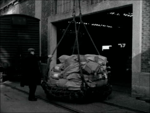hampshire southampton docks dockside showing activity / cu name on ship arundel castle / cu man fixing cargo in net / top shot net with cargo hoisted... - southampton hampshire stock-videos und b-roll-filmmaterial