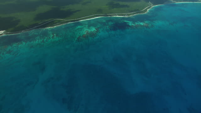 vidéos et rushes de southern coast of the island of barbuda in the caribbean. - antilles occidentales