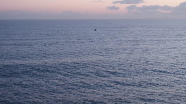 stockvideo's en b-roll-footage met zuidelijke gladde overtredingen van de zee - surfacing