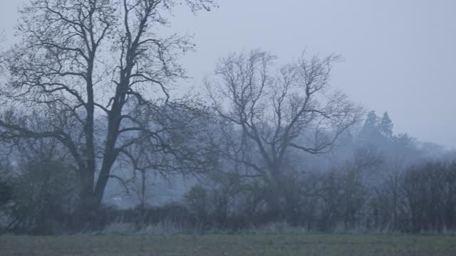 Southwell Minster & Countryside, Nottinghamshire, England, UK, Europe
