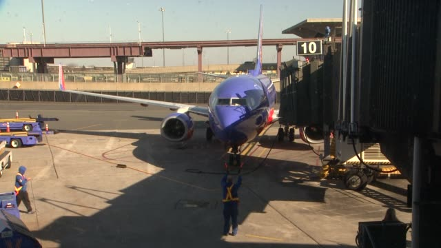 stockvideo's en b-roll-footage met southwest employees at sixty hurricane sandy pets take charter flight to new holiday home at newark liberty international airport on november 17 2012... - new jersey