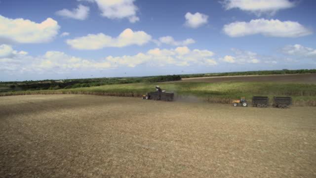 soya plantation/ agricultura /plantaã§ã£o de soja /rio grande do norte - agricultura点の映像素材/bロール