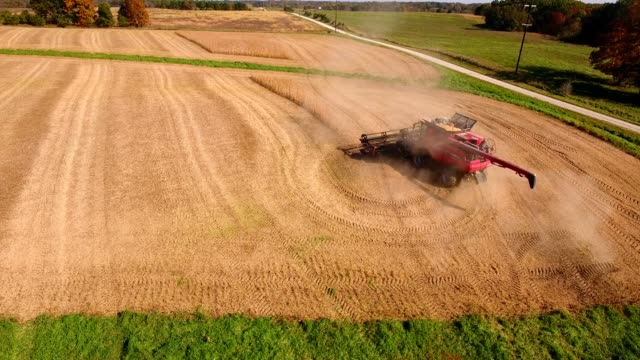 soybean harvest by combine in bethel missouri - missouri stock videos & royalty-free footage