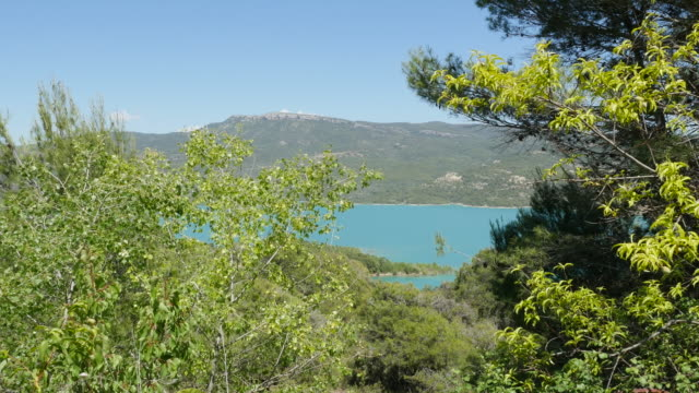 Spain Embalse de Mediano between trees