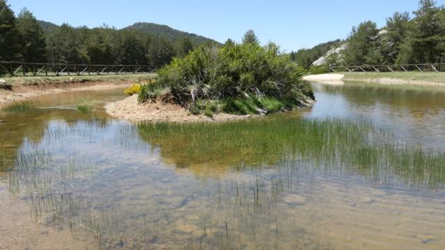 vídeos y material grabado en eventos de stock de spain pond at source of the tajo river - comunidad autónoma de aragón