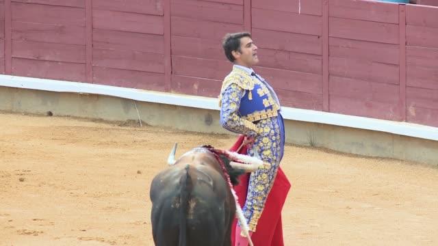 spanish bullfighter jesulín de ubrique makes a come back at cuenca's bullring - bullfighter stock videos & royalty-free footage