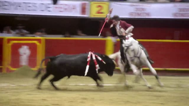 spanish mounted bullfighter pablo hermoso de mendoza celebrated a big win on saturday in medellin colombia after he killed two bulls clean famous... - bullfighter stock videos & royalty-free footage