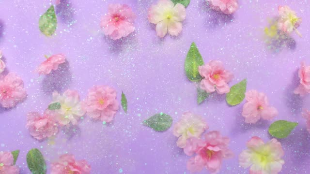 vídeos y material grabado en eventos de stock de sparkling glitter and silk cherry blossoms with leaves, exploding towards camera and becoming defocused on purple background, glittering bokeh - pastel intensidad del color