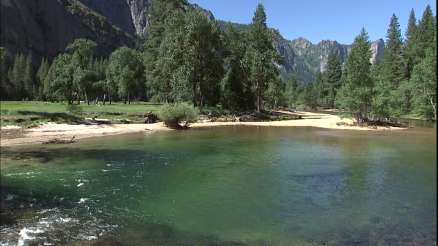 a sparkling river flows through stands of evergreen trees. - yosemite nationalpark stock-videos und b-roll-filmmaterial