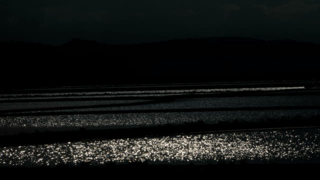 sparkling waters in a dark landscape - greyscale stock videos & royalty-free footage