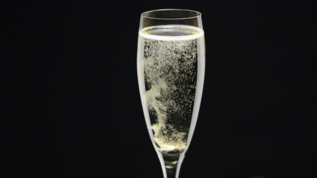 sparkling wine - champagne flute stock videos and b-roll footage