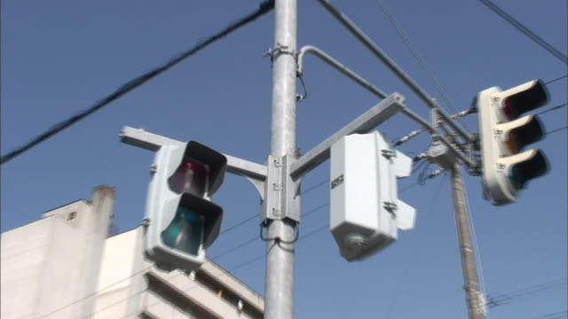vidéos et rushes de a sparrow perches on traffic lights and feeds her chicks. - signalisation routière lumineuse