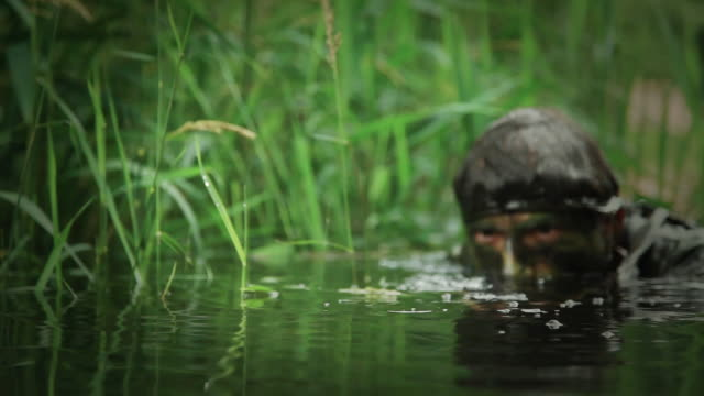 MS U.S. Special Operation Forces rifleman in water with M16 automatic rifle in Vietnam war / Jungle, Hue, Vietnam