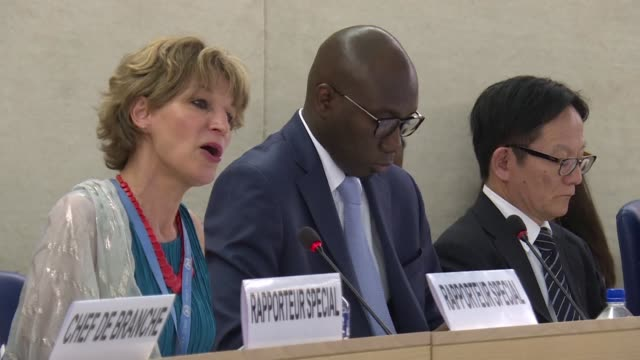 un special rapporteur on extrajudicial summary or arbitrary executions agnes callamard says she has little doubt that the murder of saudi journalist... - esecuzione pubblica video stock e b–roll