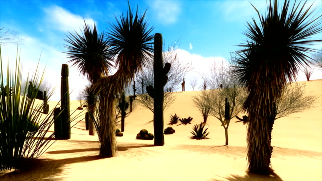 Specific vegetation on the desert