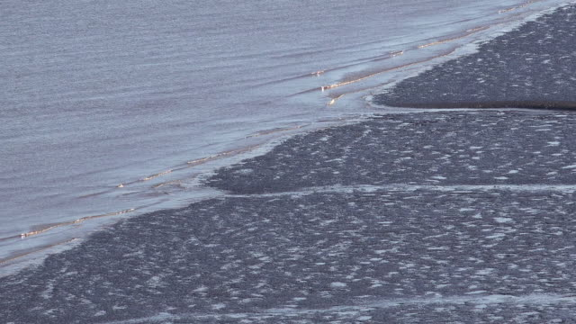 speckled mud flat and muddy water tilt and pan - mud flat stock videos & royalty-free footage