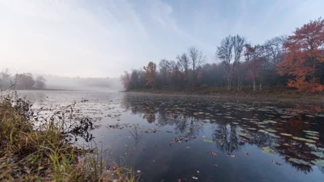 vídeos de stock, filmes e b-roll de spectacular fall reveal - lago reflection