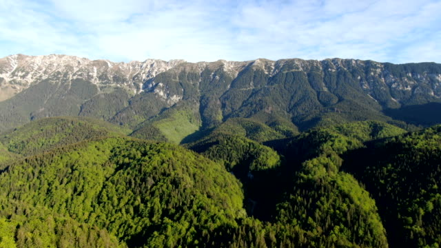 spectacular mountains with natural forest , piatra craiului national park ,carpathians/ aerial drone view, romania - transylvania stock videos & royalty-free footage