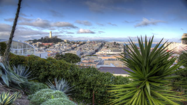 spectacular san francisco view - north beach san francisco stock videos and b-roll footage