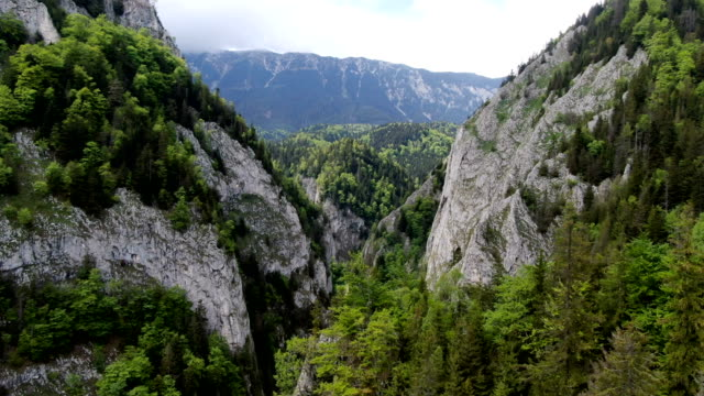 vídeos de stock e filmes b-roll de spectacular views above zarnesti gorge, piatra craiului national park ,carpathian mountains/ aerial drone view, romania - roménia