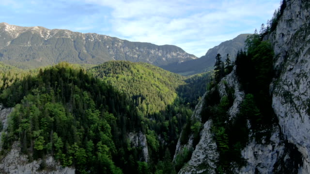 spectacular views above zarnesti gorge, piatra craiului national park ,carpathian mountains/ aerial drone view, romania - romania stock videos & royalty-free footage