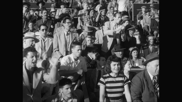 MS Spectators cheering at sporting event / United States