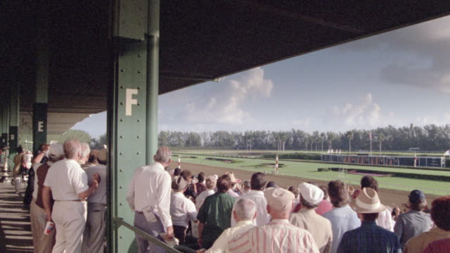 spectators in the grandstands cheering while watching a horse race. - horse racing stock videos & royalty-free footage