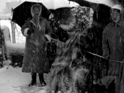 vídeos de stock, filmes e b-roll de spectators stand outside romsey abbey in terrible blizzard conditions to watch the wedding of lady pamela mountbatten to david hicks at romsey abbey... - chuva congelada