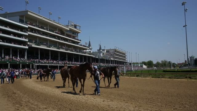 vídeos y material grabado en eventos de stock de spectators watch horse racing at churchill downs race track in louisville kentucky us ahead of the kentucky derby on may 1st 2015 shots wide shots at... - apuestas deportivas