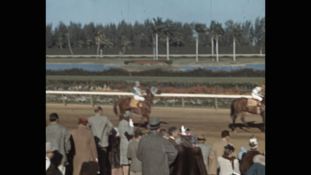 spectators watching jockeys riding horses on sports track, florida, usa - 数匹の動物点の映像素材/bロール