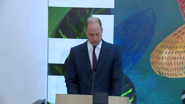 speech prince william at dublin's museum of literature about the bond between uk and ireland i am confident that the unique and precious bond between... - literature stock videos & royalty-free footage
