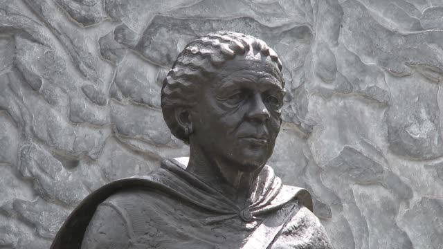 speeches and unveiling of mary seacole statue baroness floella benjamin along to veiled statue / statue of mary seacole unveiled to applause / child... - floella benjamin stock videos & royalty-free footage