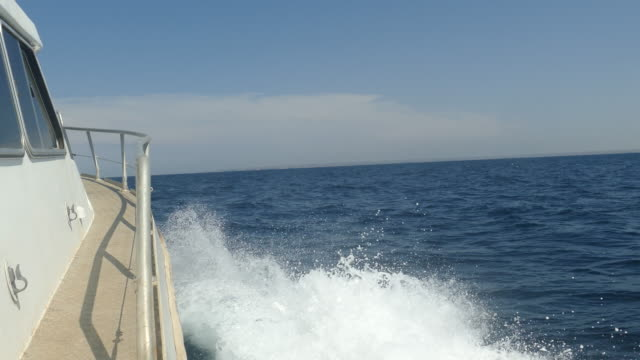 speed boat racing against the waves