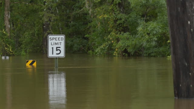 speed limit sign protruding above flowing floodwater with oak at right - florida us state stock videos & royalty-free footage