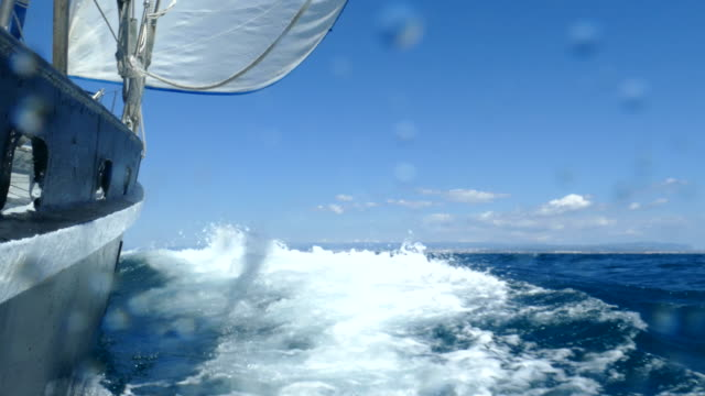 Speed on all sails