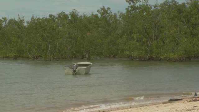 speedboat anchored near mangroves, australia - coastal feature stock videos & royalty-free footage