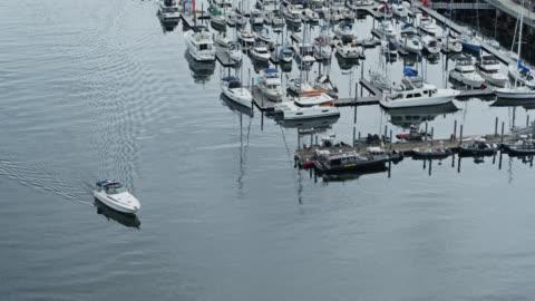 speedboat in tacoma marina - pierce county washington state stock videos & royalty-free footage