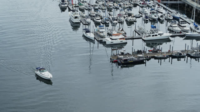 speedboat in tacoma marina - north pacific stock videos & royalty-free footage
