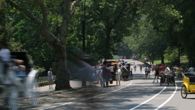 speeding through central park, time lapse[br] - artbeats stock videos & royalty-free footage